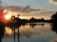 Riverfront in Bonita Springs.  (Clicking on the image will take you to the photo collection page)